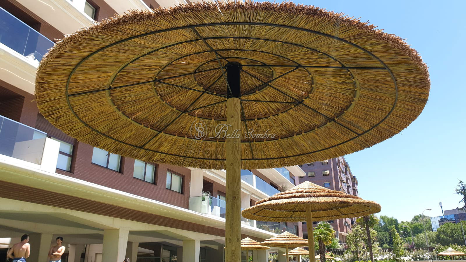 Conjunto de sombrillas en junco africano en Madrid Capital